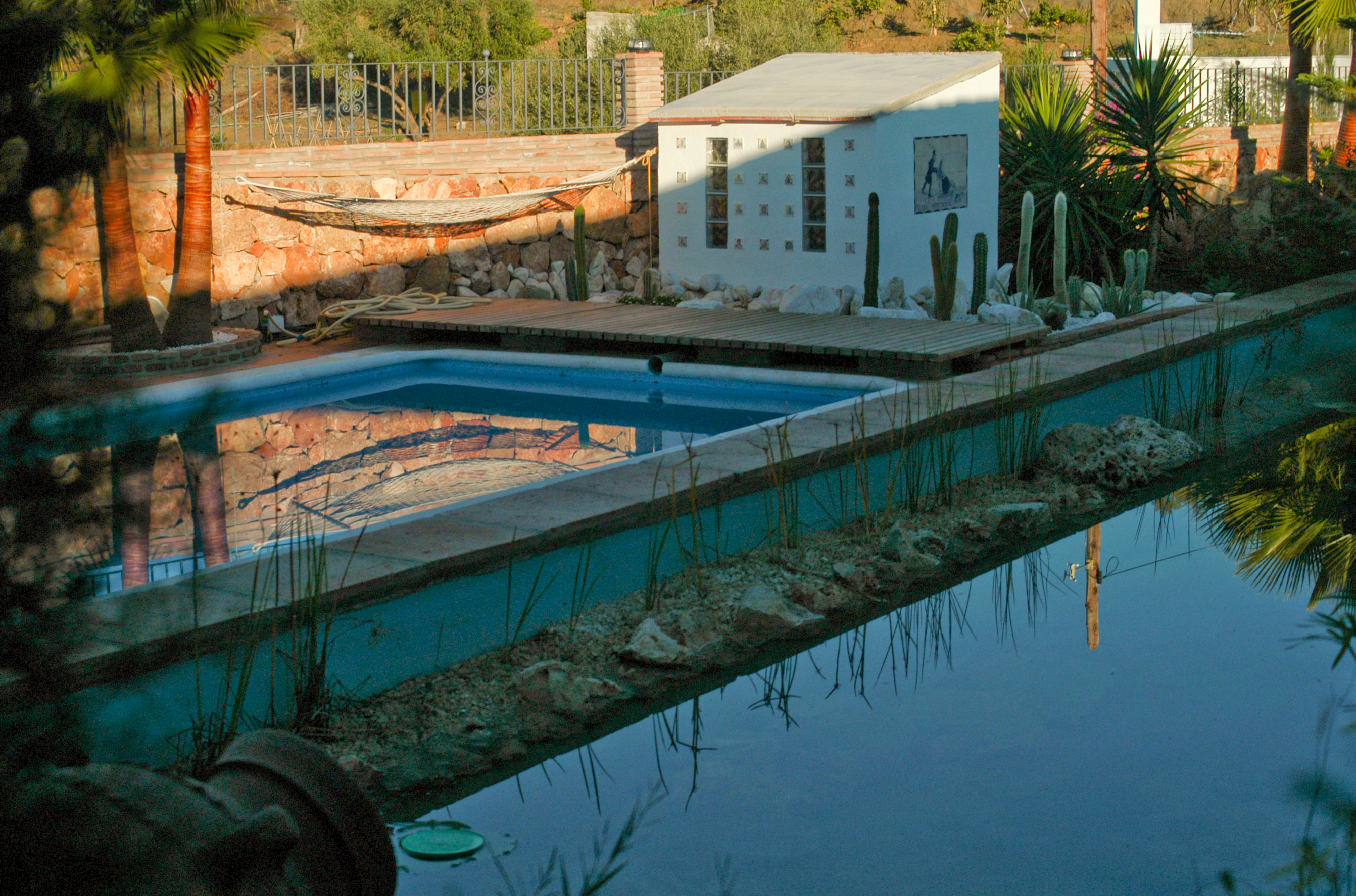 11 Pool mit Bio-Teich