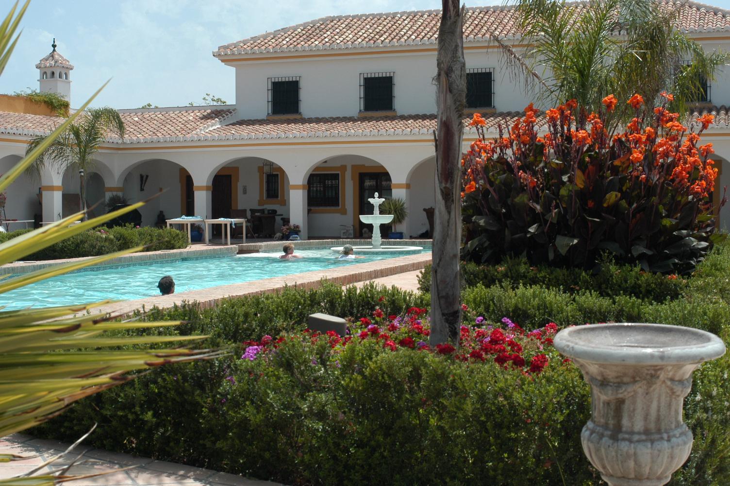3 Pool mit Garten