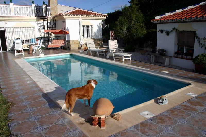 16 Pool mit Wohnhaus