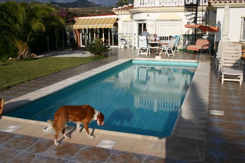 15 Pool mit Wohnhaus