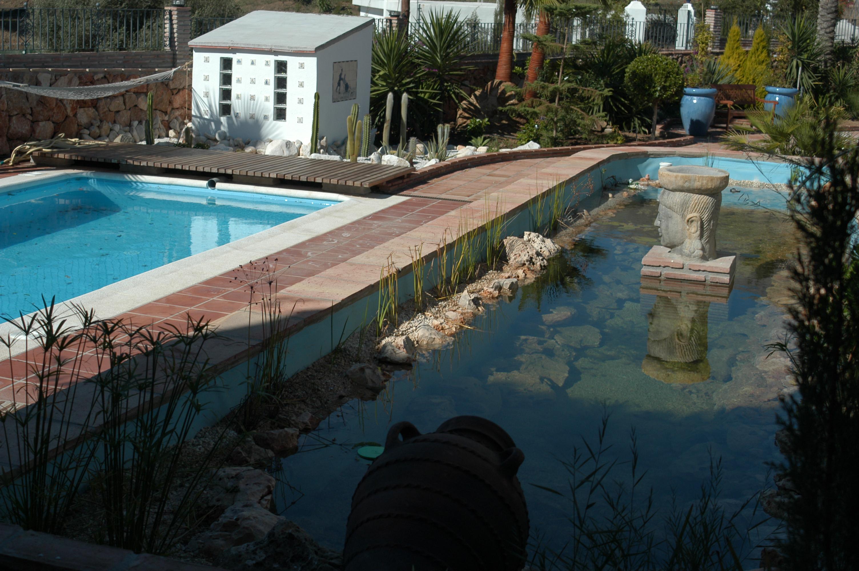 7 Feng Shui Pool Fuengirola