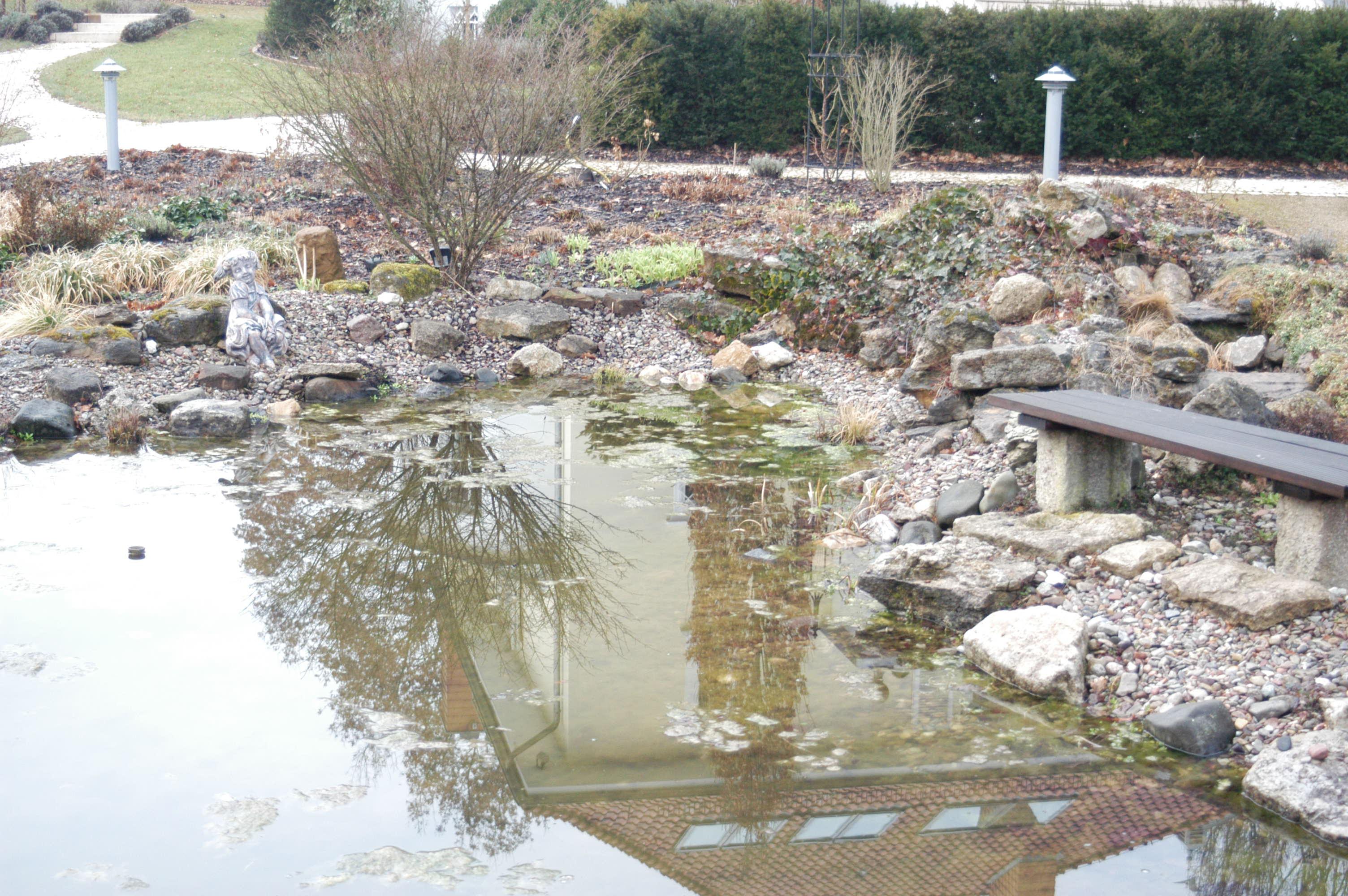Gartenteich sanierung und erweiterung swiss water for Zierfische gartenteich