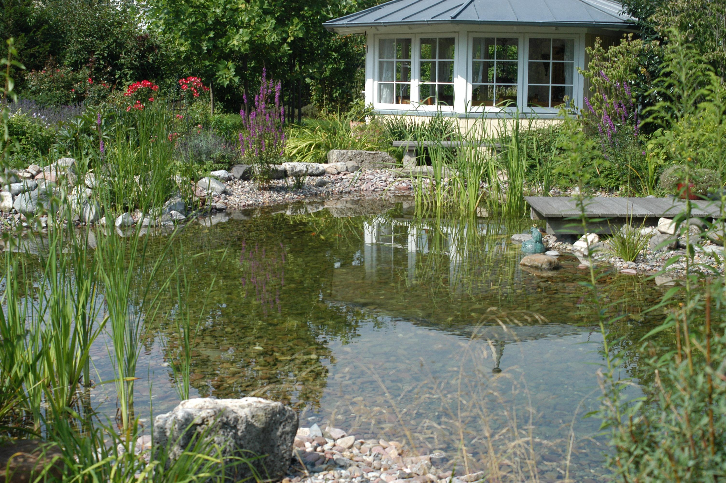 Gartenteich sanierung und erweiterung swiss water for Zierfische teich