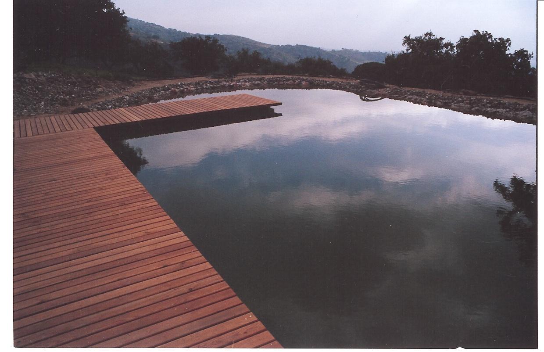 36 Teich befüllt - Steg aus Lärche Mondfasenholz