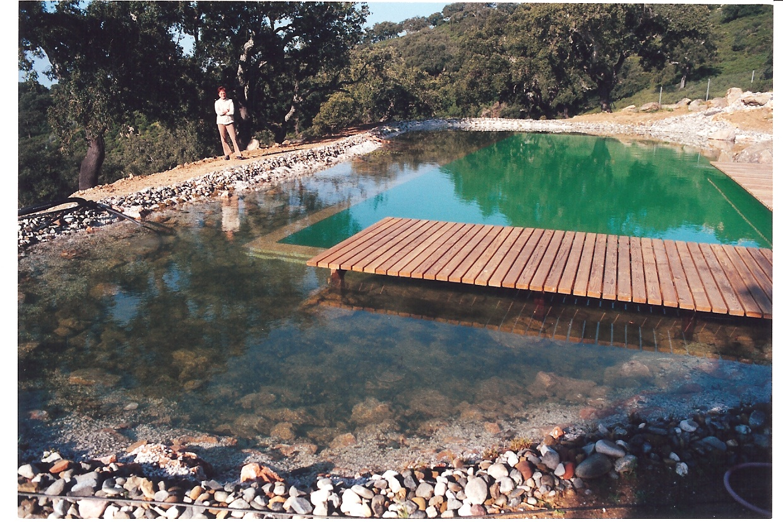 37 Befüllter Teich