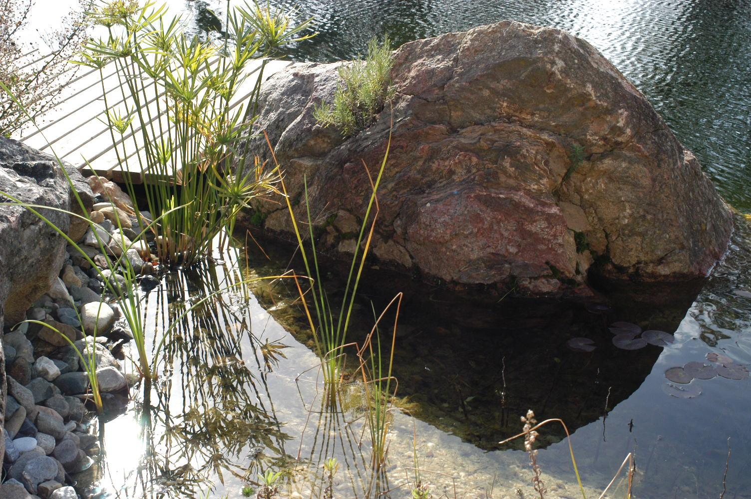 41 Befüllter Teich