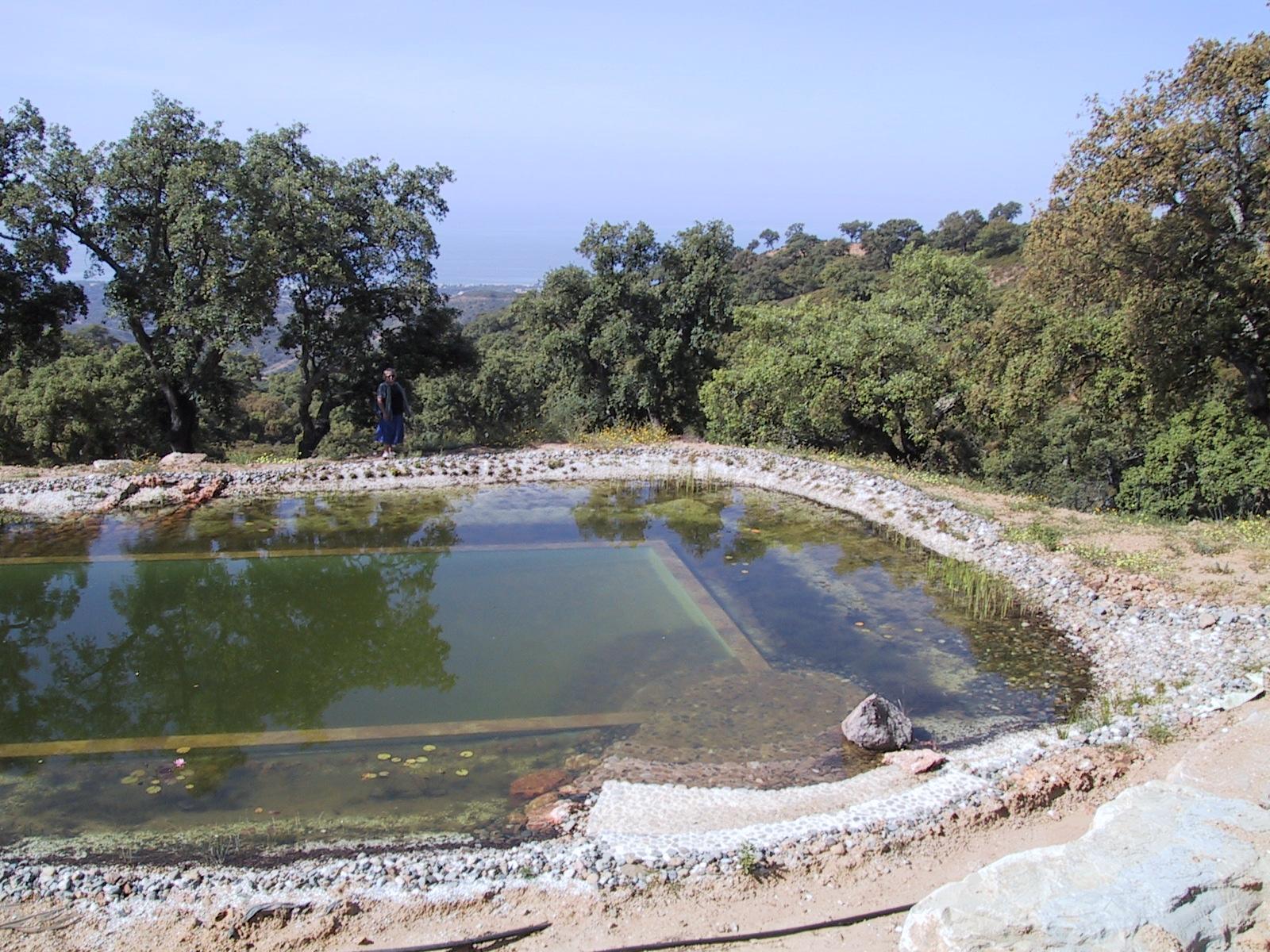 39 Befüllter Teich