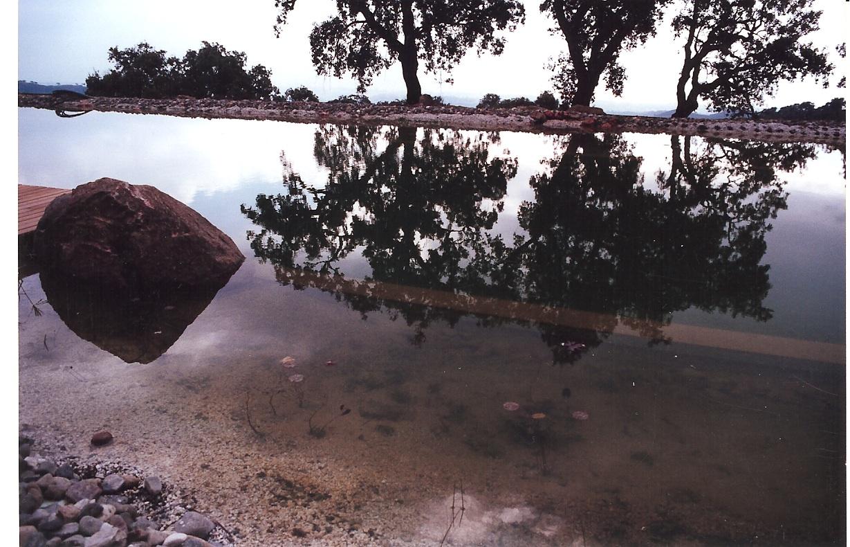 38 Befüllter Teich
